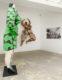 Belles ! Belles ! Belles ! Les femmes de Niki de Saint Phalle - Galerie Georges-Philippe & Nathalie Vallois