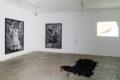 Anatomía flamenca - Galerie Georges-Philippe & Nathalie Vallois