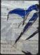 Mots – Affiches lacérées 1949-1996 - Galerie Georges-Philippe & Nathalie Vallois