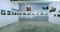 Arrêts soudains - Galerie Georges-Philippe & Nathalie Vallois