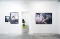 Les infiltrés - Galerie Georges-Philippe & Nathalie Vallois