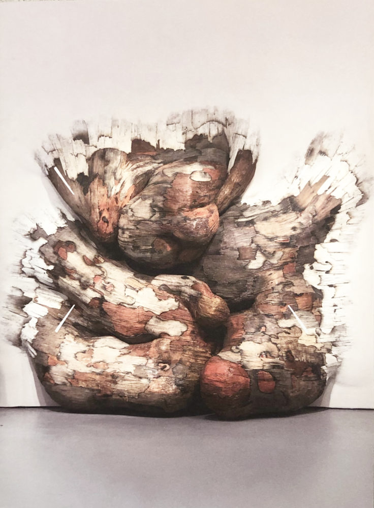 L'art urbain d'Henrique Oliveira - Galerie Georges-Philippe & Nathalie Vallois
