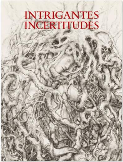 Intrigantes Incertitudes - Galerie Georges-Philippe & Nathalie Vallois